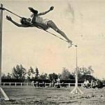 ROQUES 1954 196CM